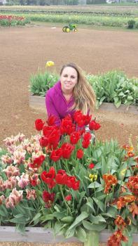 emmy tulips