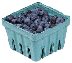 Blueberries-In-Pack