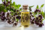 bottle-oregano-essential-oil-blooming-oregano-twigs-white-background-97914929