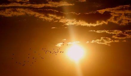sunset-1625073__340